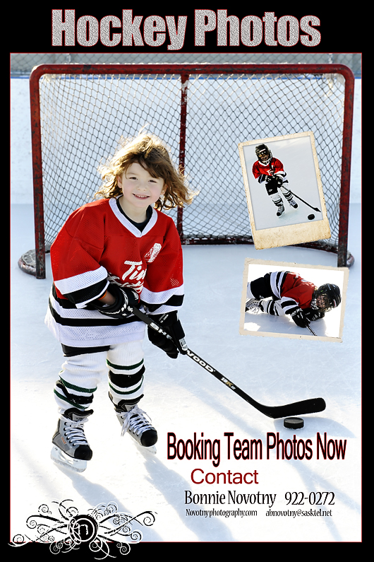 bloghockeyposter1